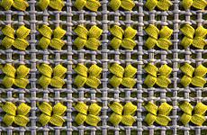 Paola Lenti's Hi Tech Siepe rug
