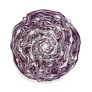 Red-Cabbage-masked-1000-web.jpg