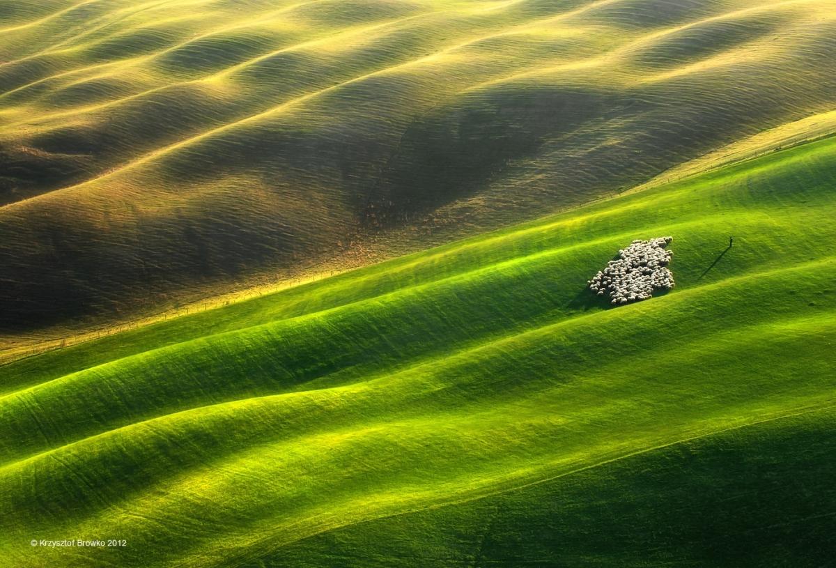 Pleated Plains The Photography Of Polish Landscape