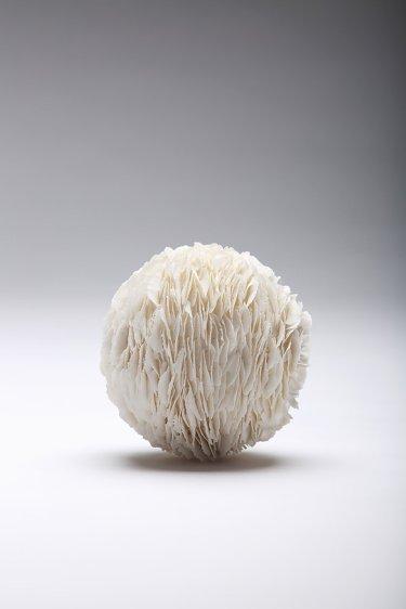 Image result for JENNIFER HICKEY ceramics porcelain untitled