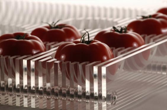 fruit-bowl-3.jpg