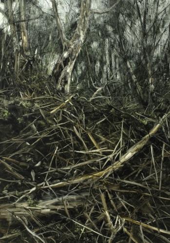 Looking up a Hill of Fallen Bush Debris, 2008. Oil on paper. 130cm x 90cm.