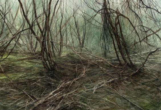 Paperbark Debris, 2008. Oil on canvas. 120cm x 175cm.