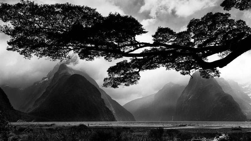 New Zealand Photographer Mike Hollman S Painterly Shots