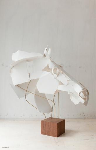 Horse 2015