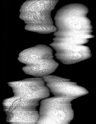 Amelie Petitmoreau's photography