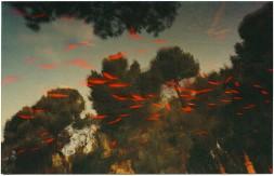 albarran-cabrera-9-getscaledpicture
