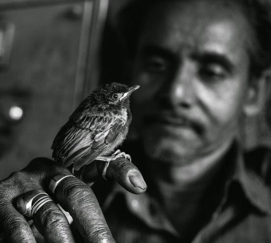 Image result for MOHAMMAD MONIRUZZAMAN photography