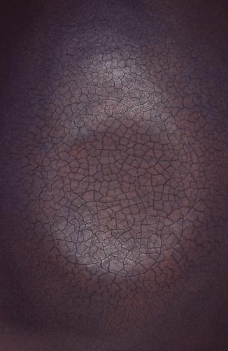 Duenna (detail)