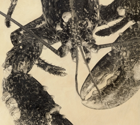 European Lobster III (Detail)