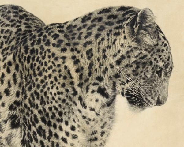 Sri Lankan Leopard I (Detail)